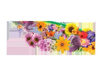 Greenfield Plant Farm - Footer Logo