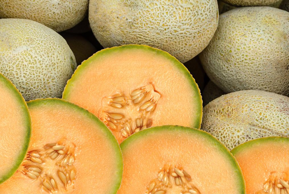 Melon 'Ambrosia'