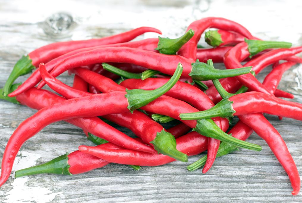 Pepper 'Cayenne'