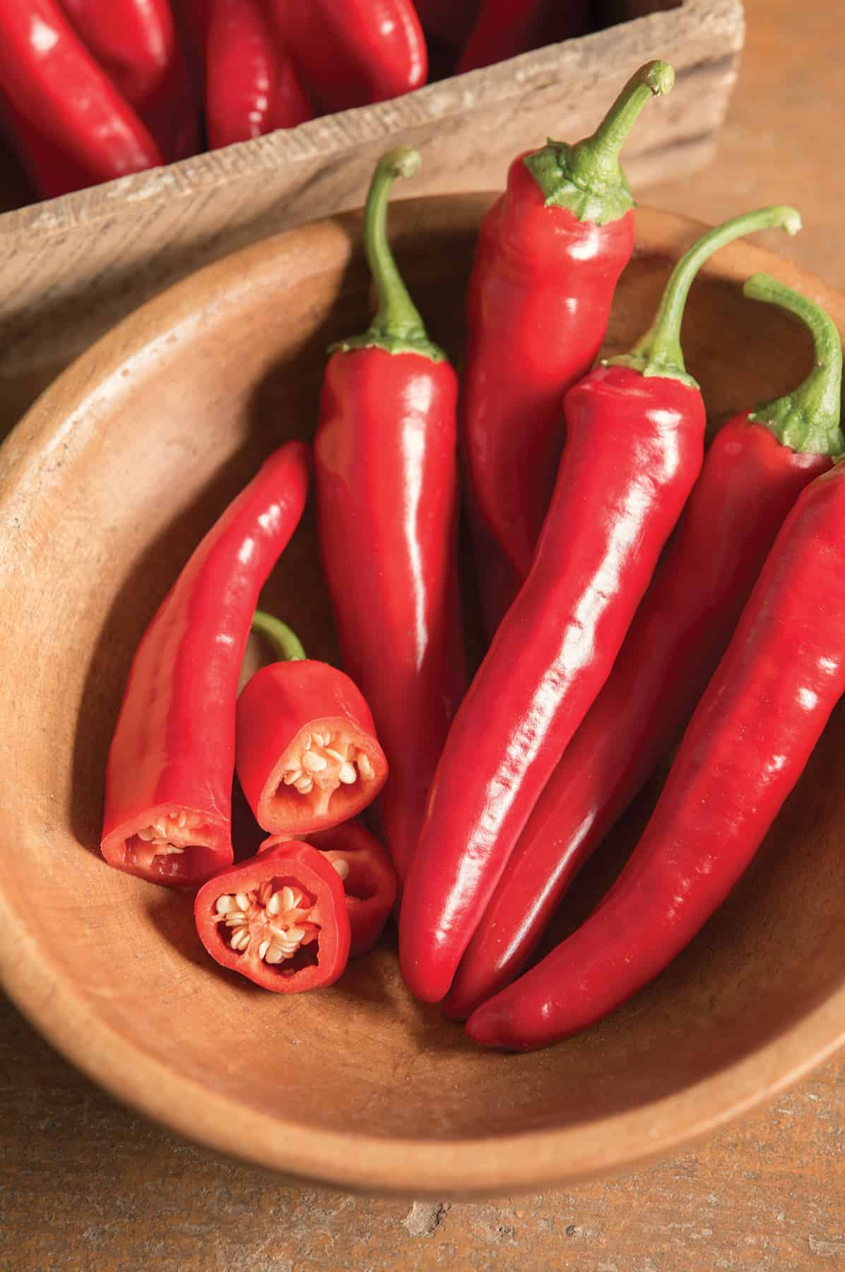 Pepper 'Cayenne Red Ember'