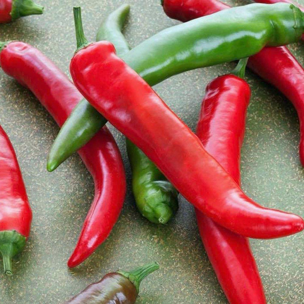 Pepper 'Garden Salsa'