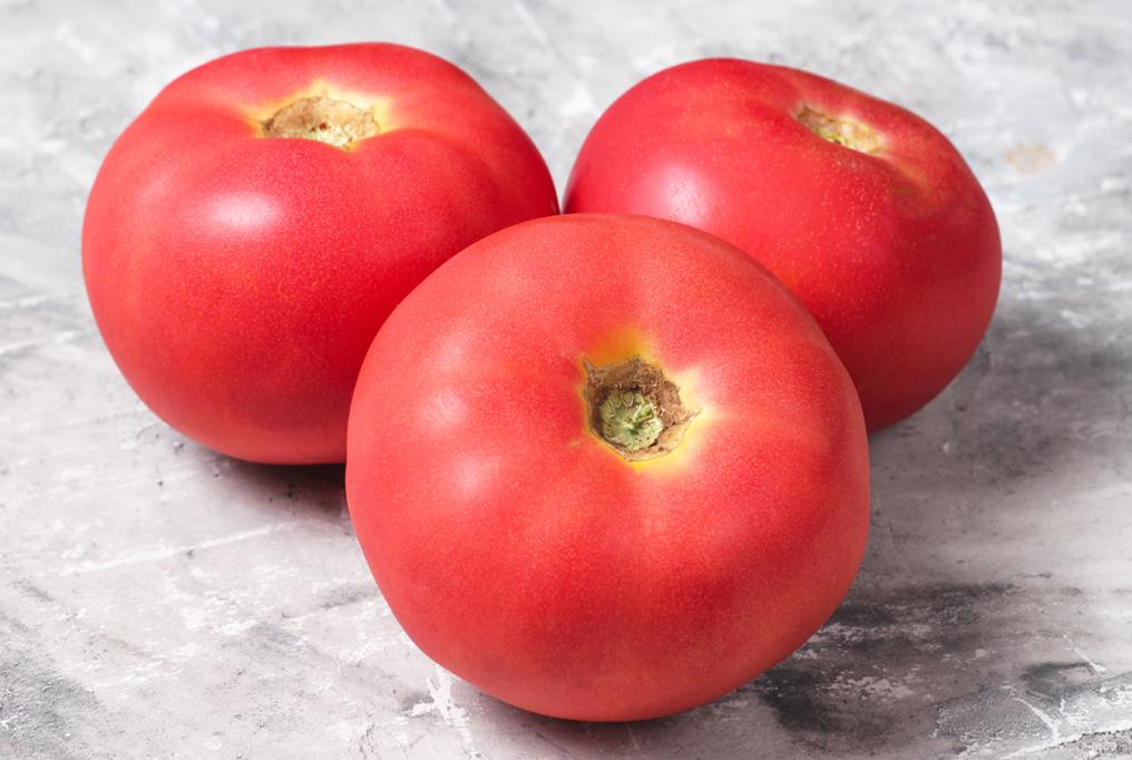 Tomato 'Pink Girl'